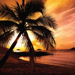 clearwater, resort, casino, hawaiian, luau