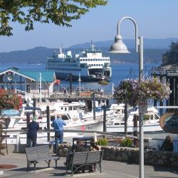 san juan islands, ocean, ferry, whales