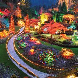 christmas, victoria, butchart gardens