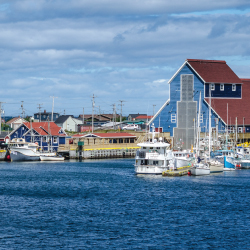 newfoundland, labrador, halifax, whale watching, boat tour, twillingate, cape spear, puffins