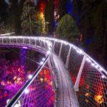 Capilano Suspension Bridge Canyon Lights